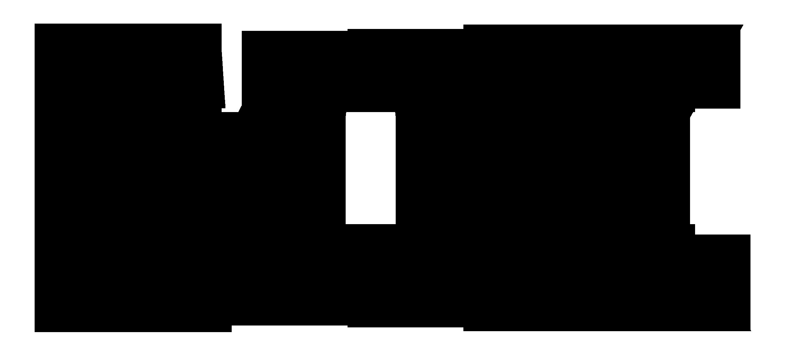 fox logo black